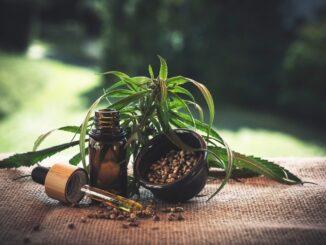 cannabis médical graine fleur huile